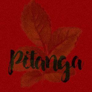 minimix Pitanga - Igor (prévia)