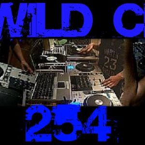 Wildchild Electro mix 2010