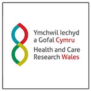 Showcase Sessions - Dr Bridie Evans - Health and Care Research Wales conference 2018