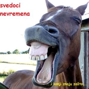 Svedoci Nevremena 22 - Hašim Tačić vs. Ivica Dači