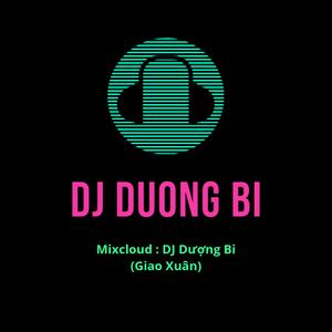 #[NEW] - Việt Mix - Yêu Em Rất Nhiều & Phai Dấu Cuộc Tình - DJ Dượng (Bi Giao Xuân) Mix