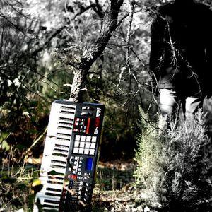FABRICE TORRICELLA  - promo mix december 2010