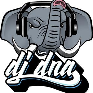 DJ DNA - Blueprint to Jam