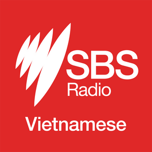 Vietnam Review (21/01/2017)