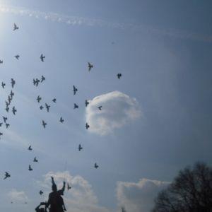 Tűzhely - 2012.07.17. - a Civil Rádió világzenei műsora