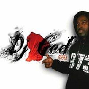 MY ZOUK SELECTA 2011 -25 MIN MIXE BY DJ CED