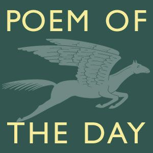 Poem of the Day: Excuse Me While I Offend You