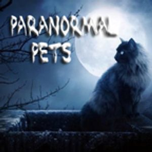 PetLifeRadio.com - Paranormal Pets - Episode 20 The Enigma of The Shadow Animals