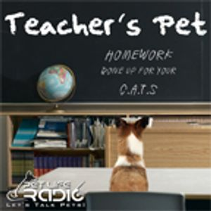 PetLifeRadio.com - Teacher's Pet - Episode 54 Living With Wolfdogs