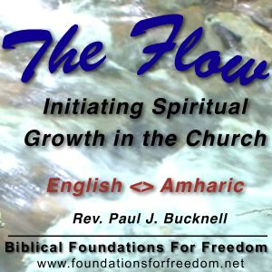 #04 Initiating Spiritual Growth in the Church - The Flow | Bilingual: English translated into Amhari
