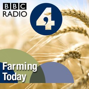 Young beekeepers, Brexit, Food and farming, Agriculture in England