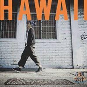 DJ Hawaii play da funk & nu-disco