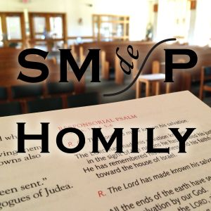Homily 2016 06-05 Sunday