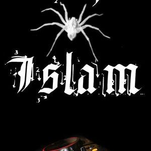 Dj Islam - Avicii Re/Mix
