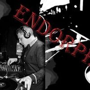 Endorphine promo mix life is music ep 2