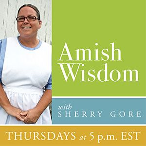 "Crystal Paine, author of ""Money Saving Mom"" on Amish Wisdom 01-03-2013"