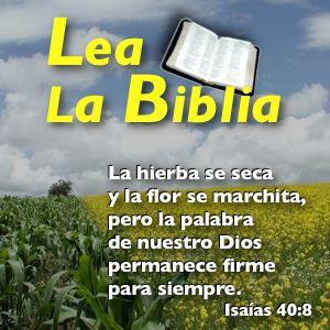 Lea La Biblia, Programa 1651