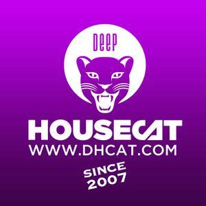Deep House Cat Show - Fish on fridays Mix - Alex B. Groove