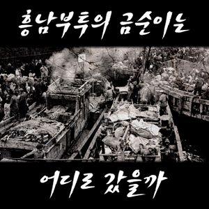 이영미의 '흥남부두의 금순이' - 김민기