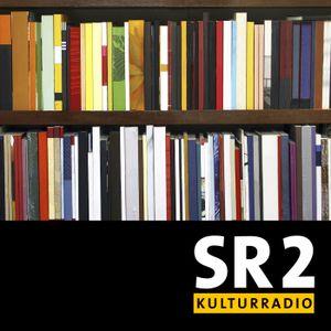 Fragen an den Autor vom 18.06.2017 - Olaf Sundermeyer: Bandenland