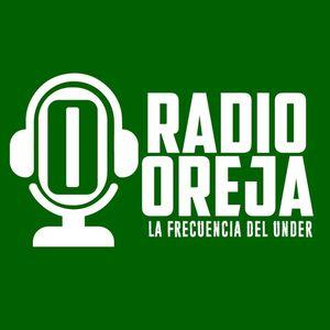 VOZ DE JUGO - PROGRAMA 016 - 14-07-15 - MARTES DE 22 A 24 HS POR WWW.RADIOOREJA.COM.AR
