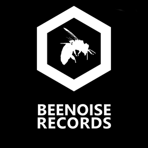 bee noise attack on ssradio whit matteo batini and dream funker