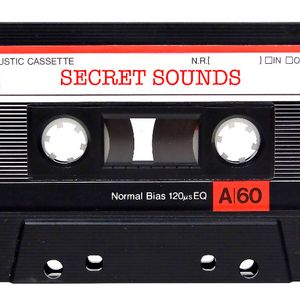 Secret Sounds Stagione 2 - Rap e i suoi Fratelli