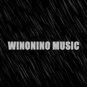Tomorrowland 2013 WARM UP - Winonino Music