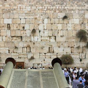 Rabbi Klein - Parsha Bamidbar 05/25/2017
