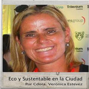 Entrevista Mg. Ma. Florencia Segura - Master en RSE