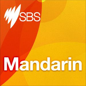 Action:Mandarin remains the second-most commonly spoken language