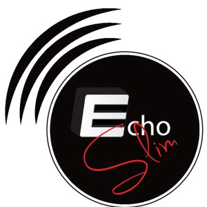 Avicii & Friends 2012-2013 House Mix By EchoSlim