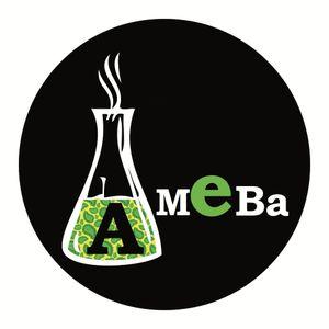 Ameba- Fuck Trend