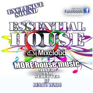 EssentialHouse night selection - Puntata 04 2015
