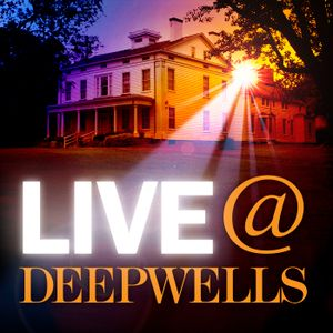 Deepwells Music Festival, Part 1: Local Artists Showcase
