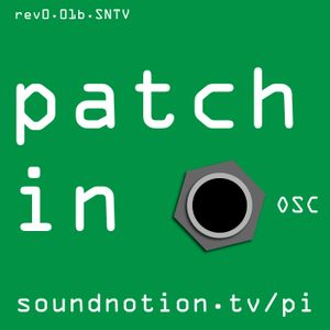 Patch In 39: Dog-Walking Algorithm