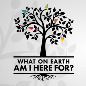 What On Earth Am I Here For Wk 3 Oct 15 2017