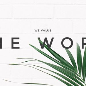We Value the Word - Allowing Our Roots To Go Deep