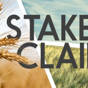 Stake Your Claim 2017
