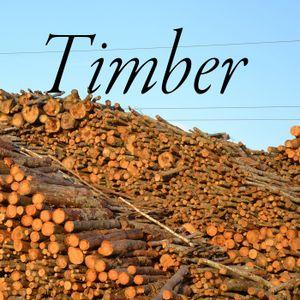 Timber! Show #125 8-17-17