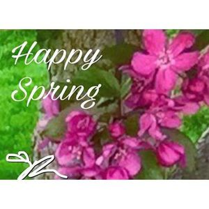 SPRING into ACTION for SUCCESS with Coach Rea