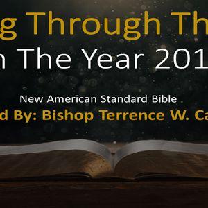Day 8: Bible Reading for Jan. 8th, 2018 | Gen. 26-27, Psalms 4, Matt 7
