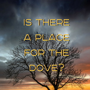7-9-17a - Josh Beers - Is There A Place For The Dove