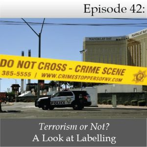 Terrorism or Not? A Look at Labelling