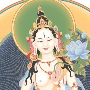 Tonglen Meditation 1