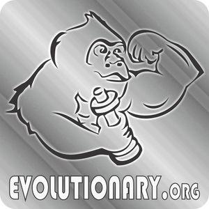 Evolutionary Hardcore Q&A: Episode #16