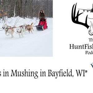 180 - Drive Your Own Dog Sled with Wolfsong Adventures in Mushing in Bayfield, Wisconsin