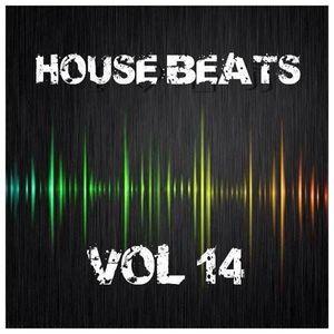 House Beats 2016 Vol 14 Mixed By John The Baptist