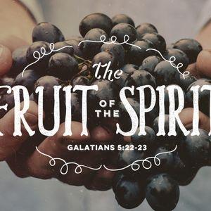 The Fruit of the Spirit: Part 3 (Audio)