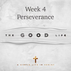 The Good Life - Perseverance